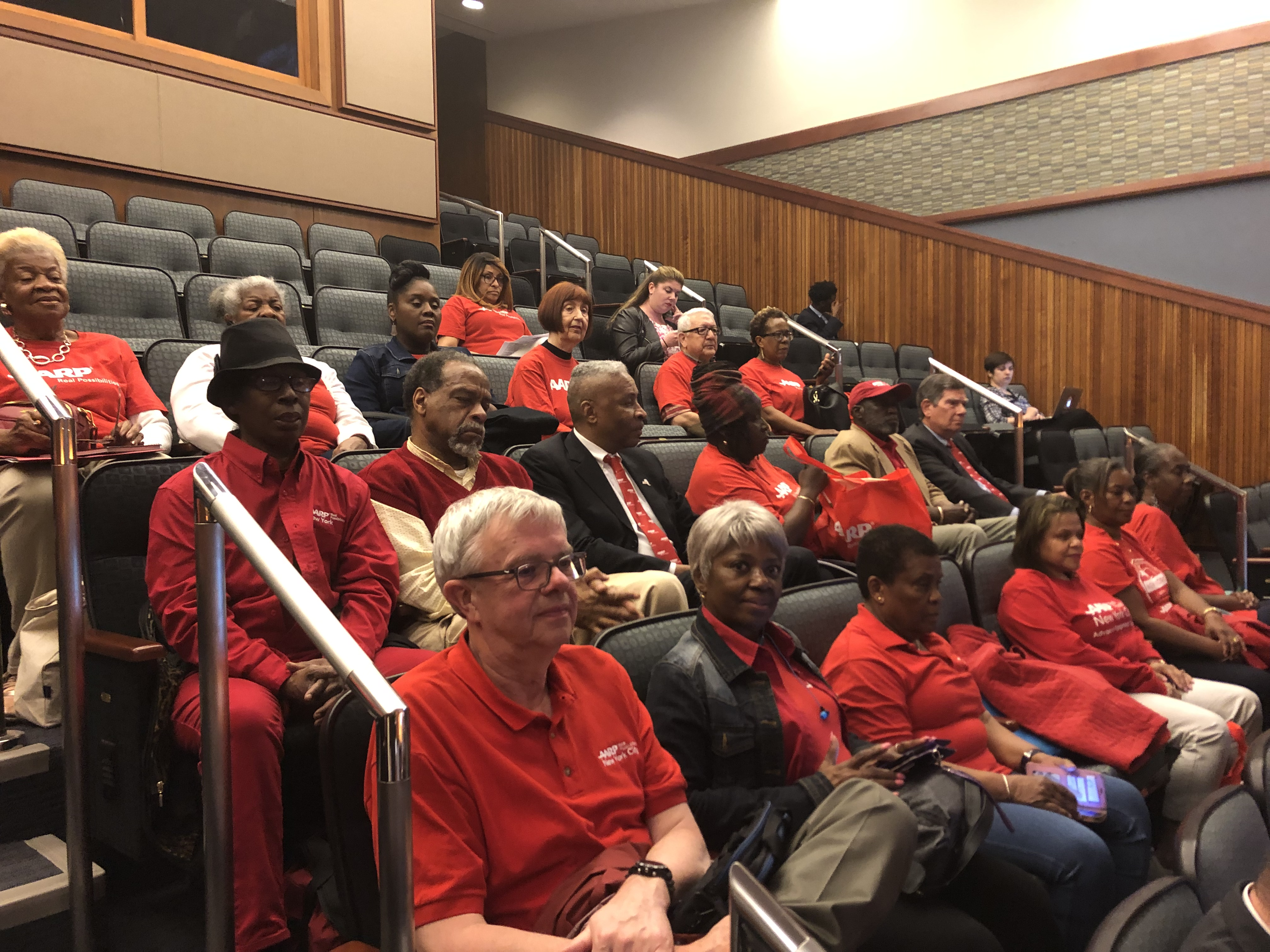 Volunteers at a public hearing