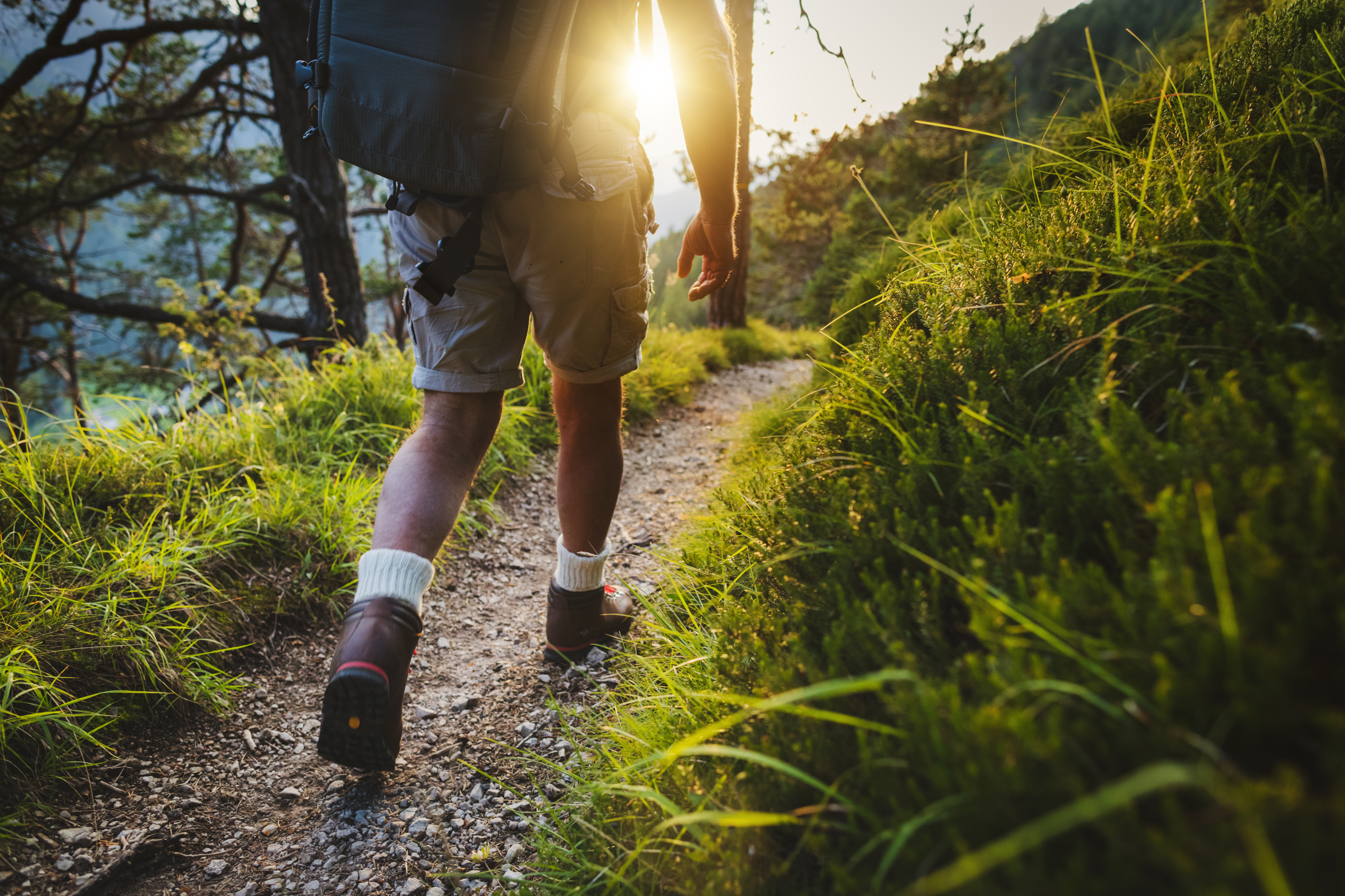 Join Local Hikes, Bike Tour to Stay Active